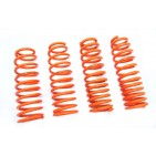 Honda Integra/RSX 05+ O-Spec Lowering Springs Megan Racing
