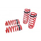 BMW 5-Series F10 10+ Lowering Springs Megan Racing
